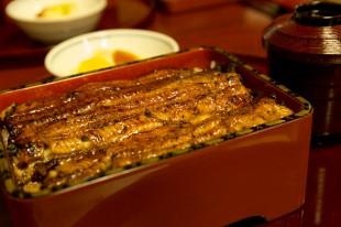 サマローリ鰻